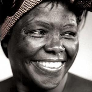 Wangari-maathai-300x300